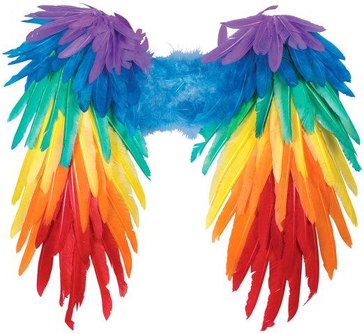 deguisement-ailes-arc-en-ciel