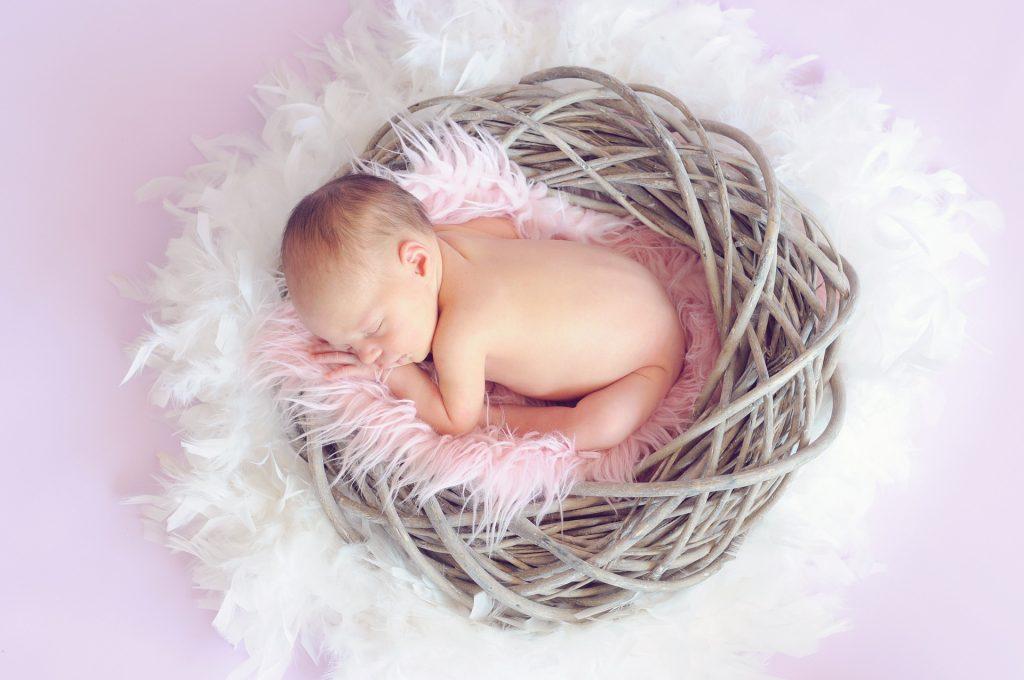 Bébé endormi dans un nid