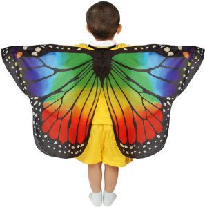 Déguisement ailes papillon